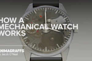 This video explains how a mechanical watch works better than words ever could