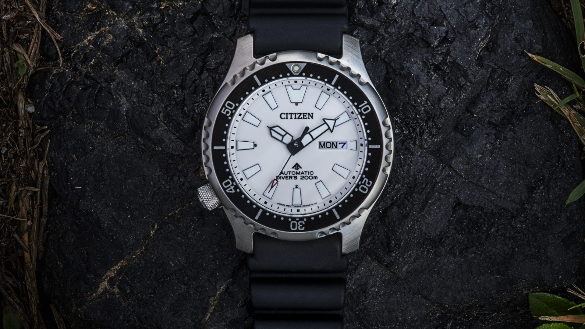 Citizen Promaster NY011: Catching a bigger fugu